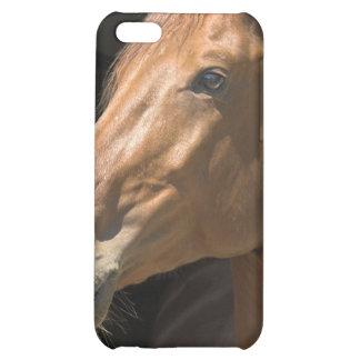 Chestnut Horse Profile iPhone 4 Case