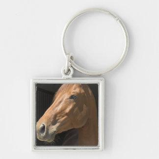 Chestnut Horse Profile Keychain