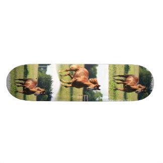 Chestnut Horse Skateboard