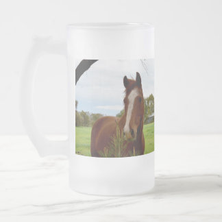 Chestnut Horse Sniffing A Banksia Tree, Frosted Glass Beer Mug