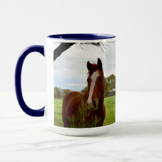 Chestnut Horse Sniffing A Banksia Tree, Mug