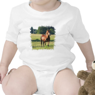 Chestnut Horse Standing Baby T-Shirt