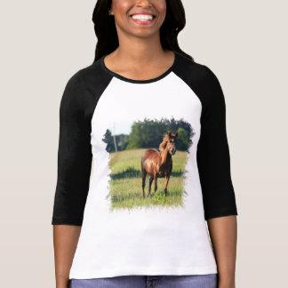 Chestnut Horse Standing Baseball Shirt