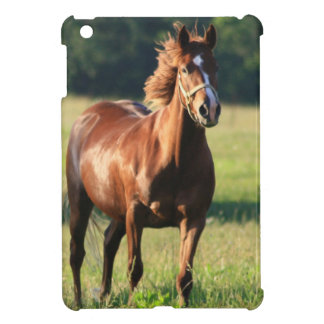 Chestnut Horse Standing Case For The iPad Mini