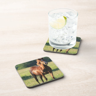 Chestnut Horse Standing Cork Coasters