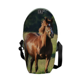 Chestnut Horse Standing Courier Bag
