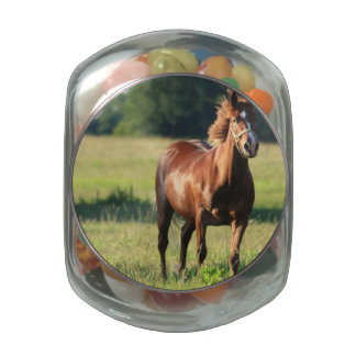 Chestnut Horse Standing Glass Candy Jars