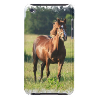 Chestnut Horse Standing iTouch Case Barely There iPod Cover