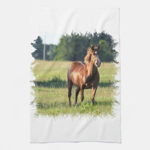 Chestnut Horse Standing Kitchen Towel