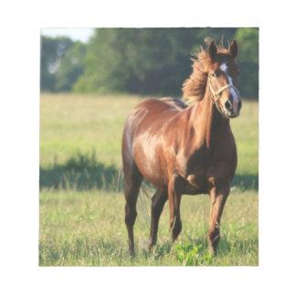 Chestnut Horse Standing Notepad