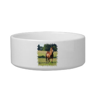 Chestnut Horse Standing Pet Bowl Cat Water Bowls