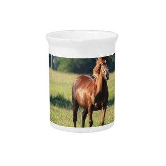 Chestnut Horse Standing Pitcher