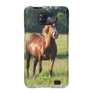 Chestnut Horse Standing Samsung Galaxy Case Samsung Galaxy S2 Case