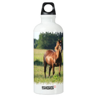 Chestnut Horse Standing SIGG Traveler 0.6L Water Bottle