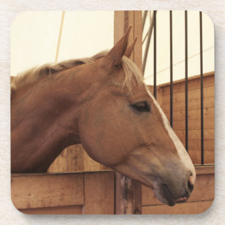 Chestnut Horse with Blaze Looking Out From Stall Beverage Coaster