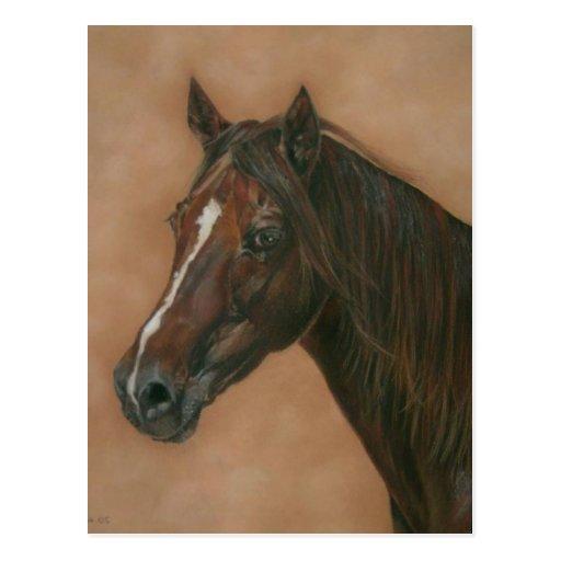 Chestnut mare horse portrait equine art painting post cards
