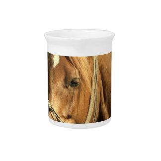 Chestnut Pony Pitcher
