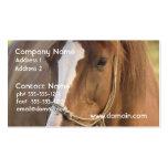 Chestnut Quarter Horse Business Cards