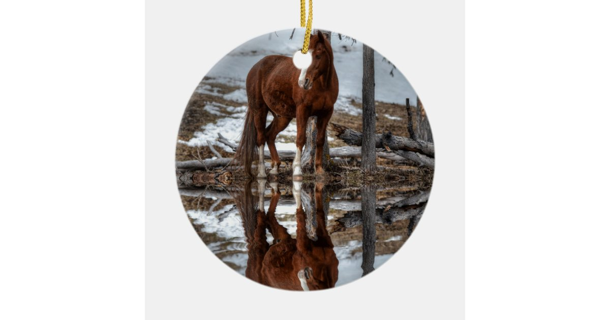 Chestnut ranch horse and pond reflection ceramic ornament zazzle Pond ornaments