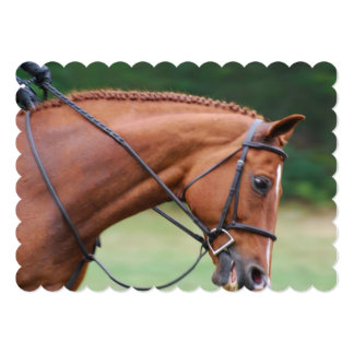 Chestnut Show Horse 5x7 Paper Invitation Card