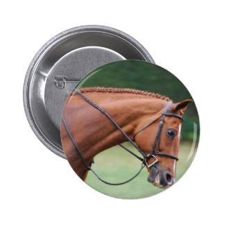 Chestnut Show Horse Button