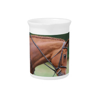Chestnut Show Horse Pitcher