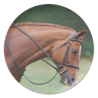 Chestnut Show Horse Plate