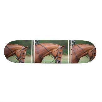 Chestnut Show Horse Skateboard