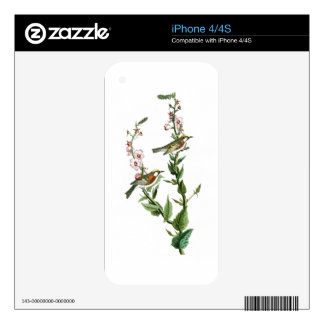 Chestnut-sided Warbler Audubon Birds of America Decals For iPhone 4S