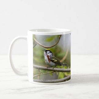Chestnut-sided Warbler Classic White Coffee Mug