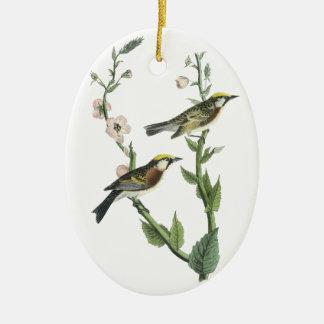 Chestnut-sided Warbler, John Audubon Double-Sided Oval Ceramic Christmas Ornament