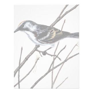Chestnut-sided warbler letterhead