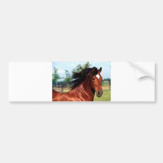 Chestnut Stallion Galloping Along A Path Car Bumper Sticker