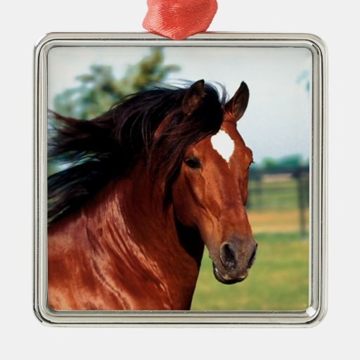 Chestnut Stallion Galloping Along A Path Ornaments