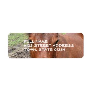 Chestnut Thoroughbred Horse Mailing Label Return Address Label