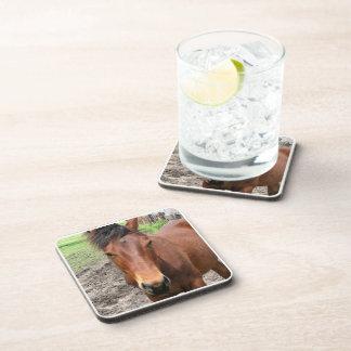 Chestnut Thoroughbred Horse Set of Coasters