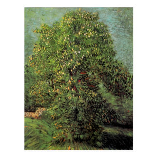 Chestnut Tree in Blossom, Vincent van Gogh Postcard