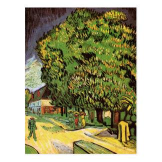 Chestnut Trees in Blossom Postcard