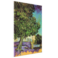 Chestnut Trees in Blossom, Vincent van Gogh. Stretched Canvas Prints