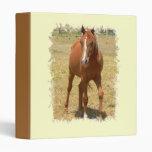 Chestnut Yearling Horse Binder