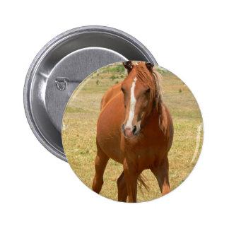 Chestnut Yearling Horse Round Button