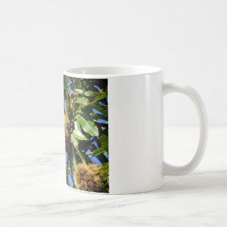 Chestnuts Hanging On The Tree Coffee Mug