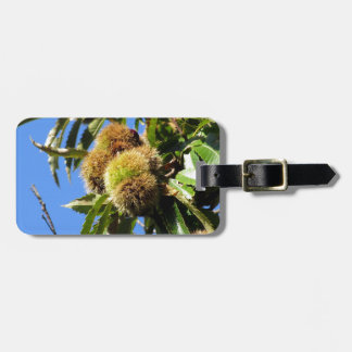 Chestnuts Hanging On The Tree Bag Tag