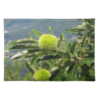 Chestnuts hanging on the tree cloth place mat
