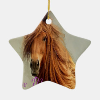 CHEVAL.png SUCKS Double-Sided Star Ceramic Christmas Ornament
