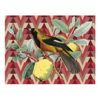 Chevron y pájaro del vintage postales