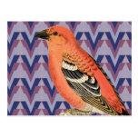 Chevron y pájaro rosado del vintage postal