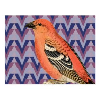 Chevron y pájaro rosado del vintage tarjeta postal