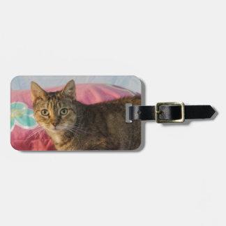 Chevy Tag For Luggage