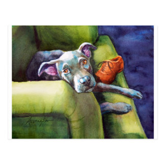 Chew Shoe, Terrier on the Couch Postcard